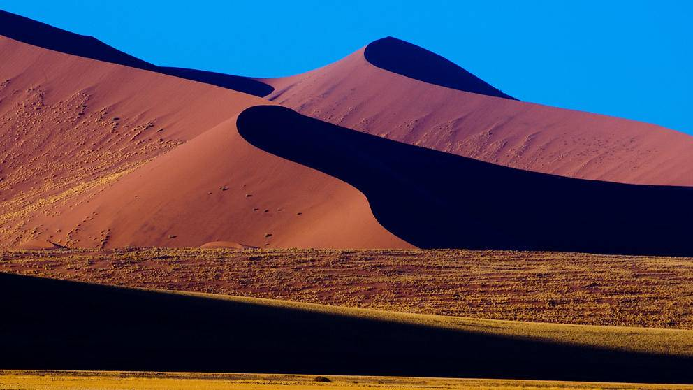 Wind-shaped dunes